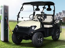 BigHorn EV5 Electric Utility Golf Vehicle